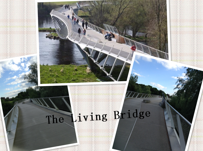 Living Bridge HY