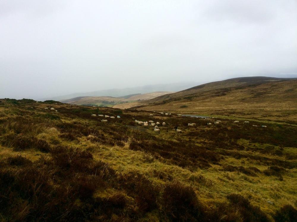 UL_Outdoor_Activities_Ireland