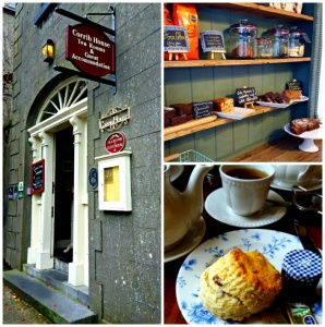 University of Limerick Tea Trip