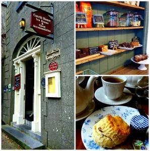 University of Limerick Tea Trip