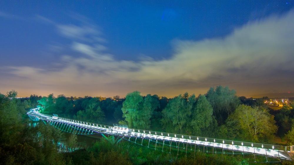 Bochao Yang - Living Bridge at night