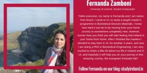Fernanda Zamboni, Brazil